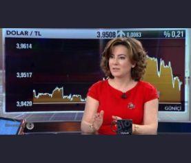 Sermaye Piyasaları Gelişmeleri